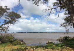 Lake-Bolac-Frontage-Rd-10-Oct-2017-23-scaled